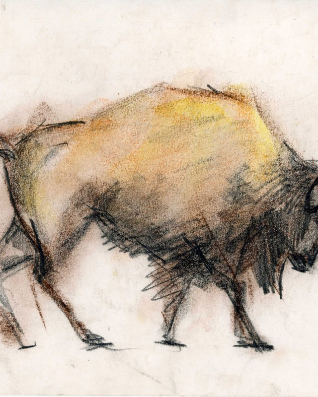 artist: Rebeca Muñoz Carrilero category; Drawing - Animals name: bison 1 (1993)