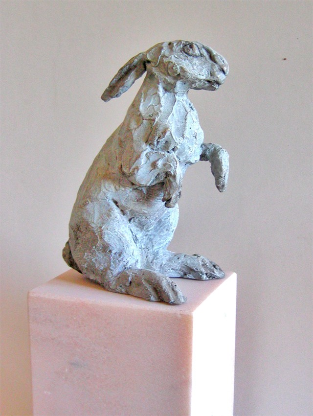Rebeca Muñoz Carrilero - Art Work - hare