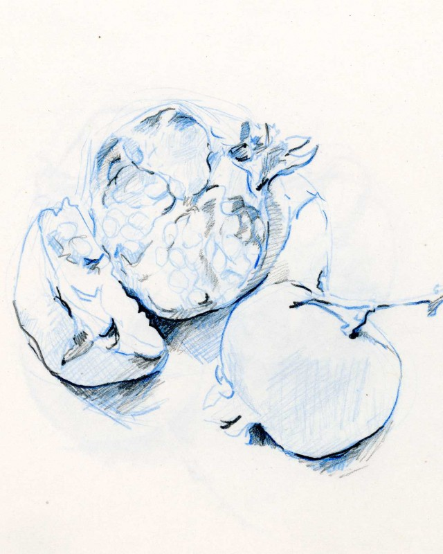 artist: Rebeca Muñoz Carrilero category; Drawing - Landscapes name: pomegranates 1 (2011)