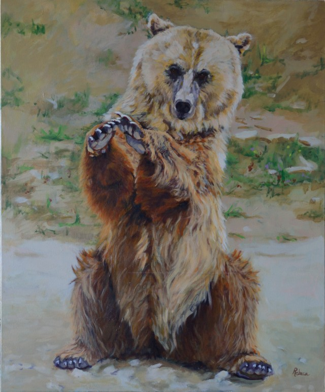 Rebeca Muñoz Carrilero - Art Work - un oso para Björn